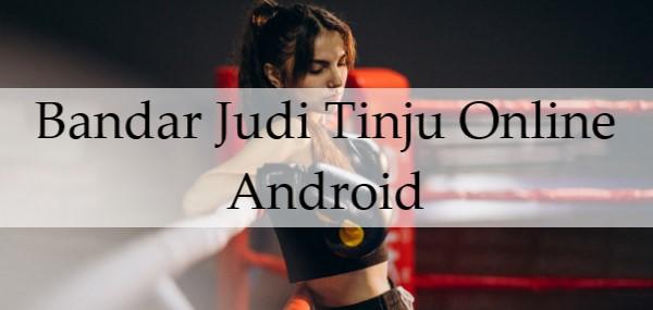 Bandar Judi Tinju Online Android